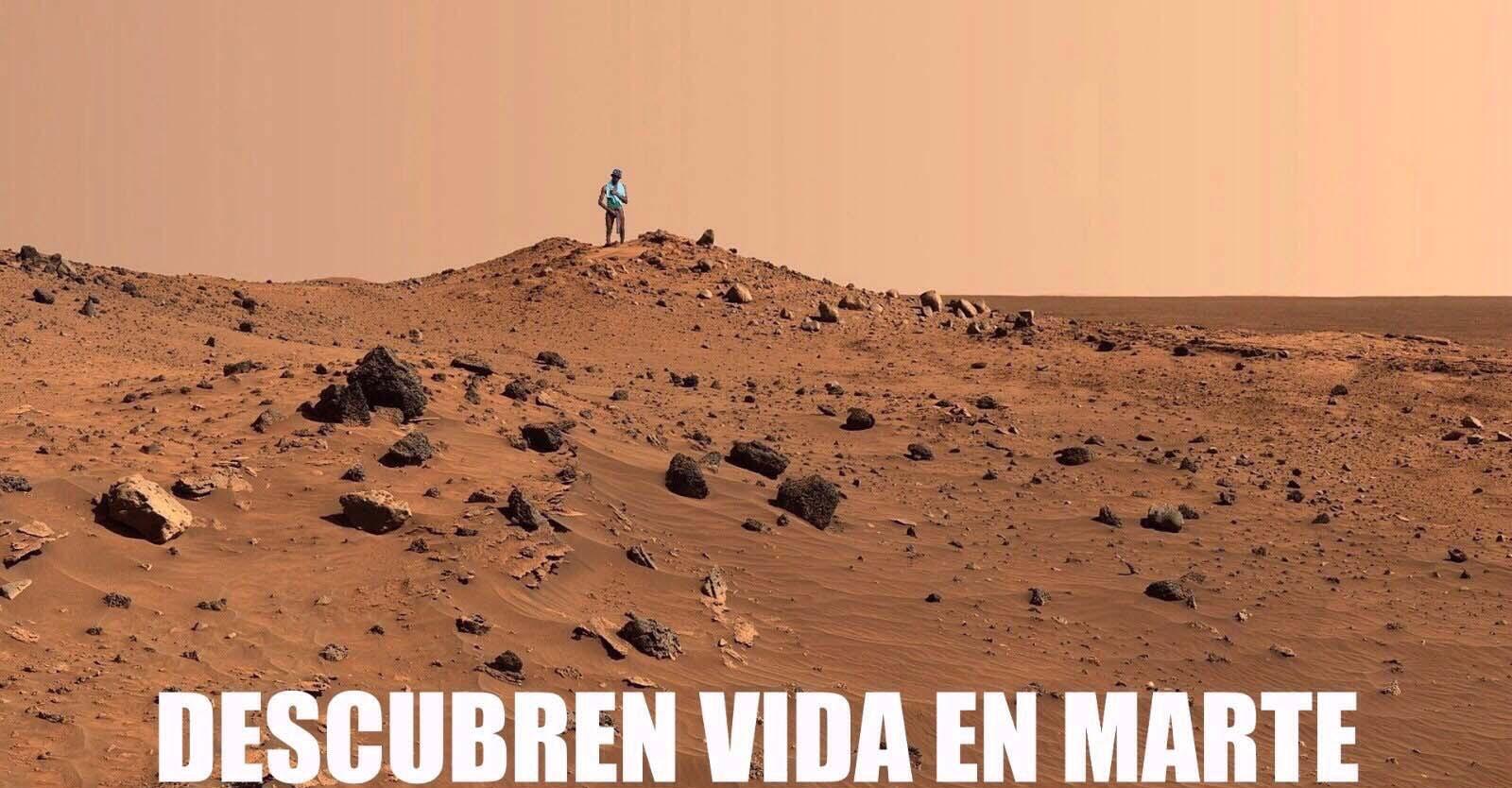 Descubren vida en Marte, era el negro del whatsapp