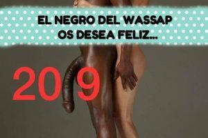 Negro del whatsapp feliz 2019